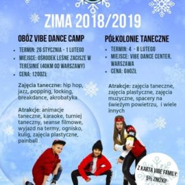 Vibe Dance Center Winter Camp