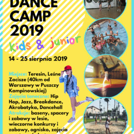 Vibe Dance Summer Camp 2019